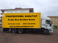 Profesyonel Nakliyat